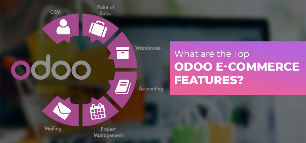 Odoo ECommerce features