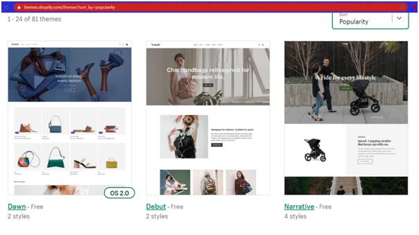Shopify Themes example